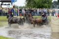 12. Lähdener Pferdetage 2018